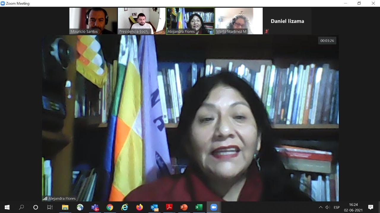 Alejandra Flores Constituyente